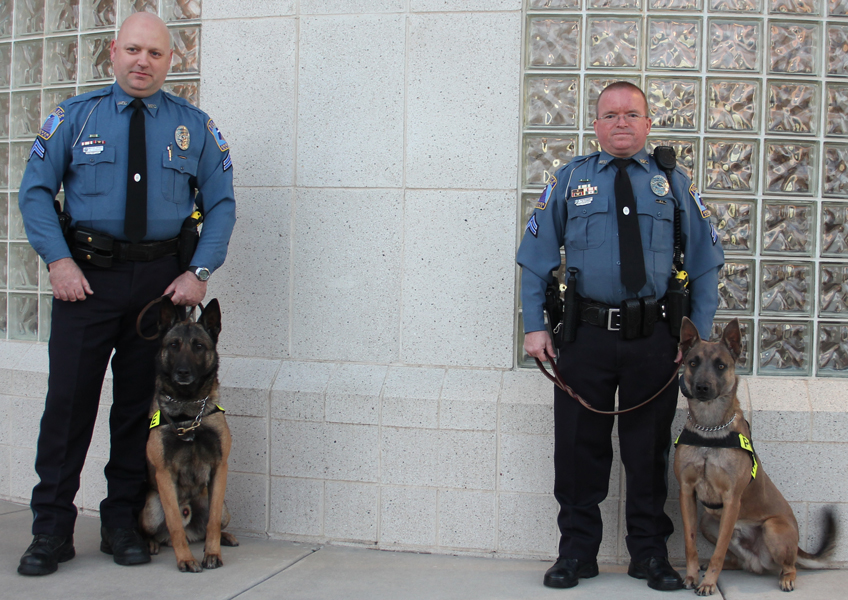 Andover K9 Teams